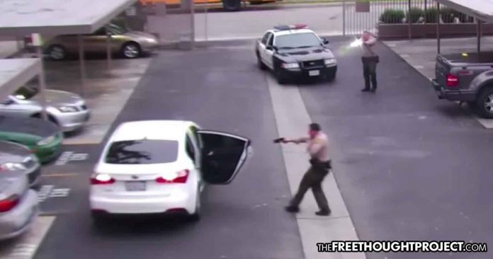 Shot 34 Times: Disturbing LAPD Video Shows Unarmed Father of 3 Executed by 2 Cops