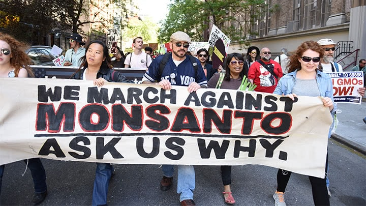 2019 Monsanto Roundup Lawsuits: What You Need to Know