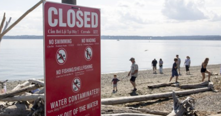 Seattle Poop Problem: Weekend Power Outages Cause 3 Million Gallon Dump of Human Waste into Puget Sound