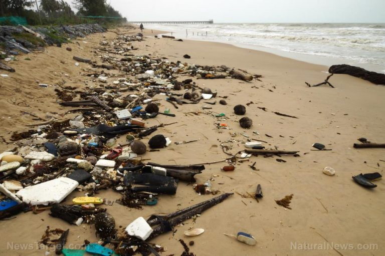 Raw human sewage all over the beaches of California is the perfect metaphor for the failure of liberalism