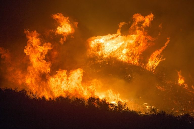 """The """"Lungs Of The Earth"""" Are Literally Being Burned Away As Unprecedented Wildfires Absolutely Ravage Our Planet"""
