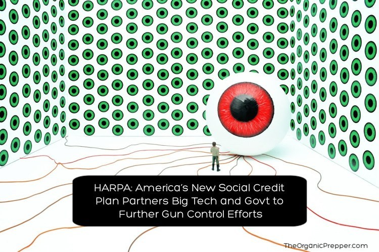HARPA: America's New Social Credit Plan Partners Big Tech and Govt to Further Gun Control Efforts