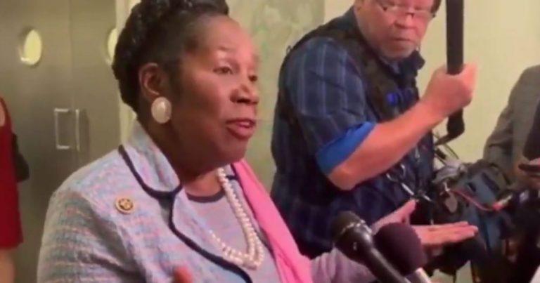 Video: Village Idiot Sheila Jackson Lee falsely claims AR-15s 'heavy,' fires .50 caliber bullets