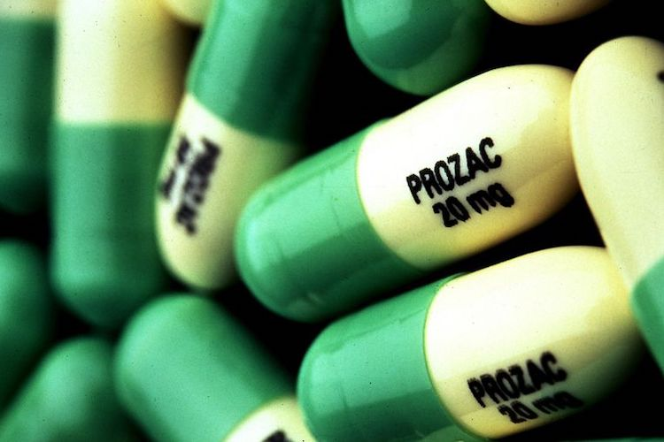 PROZAC Mass Murders: The Truth Comes to Light