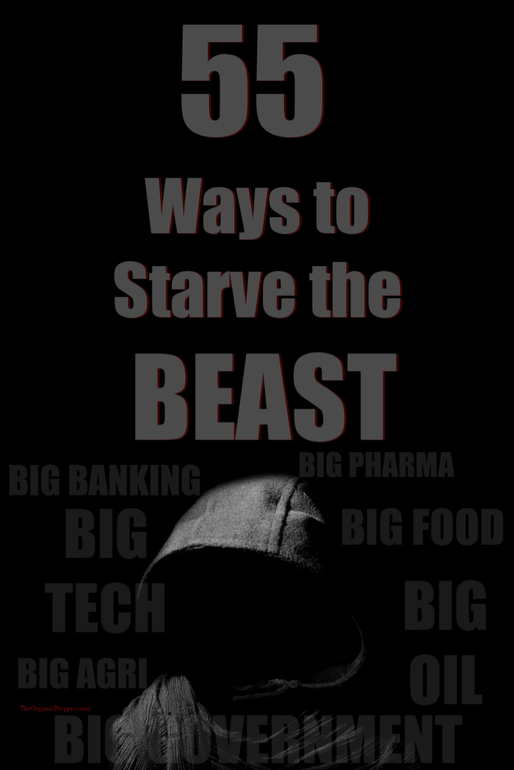 55 Ways to Starve the Beast