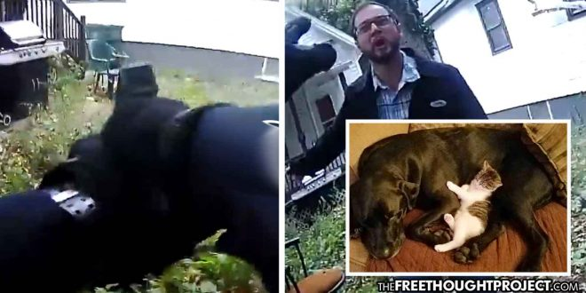 Horrifying Video Shows Cop Jump Family's Fence, Kill Dog in Front of 10yo Girl