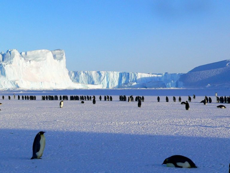 Study shows increasing Antarctic sea ice levels may cause another ice age