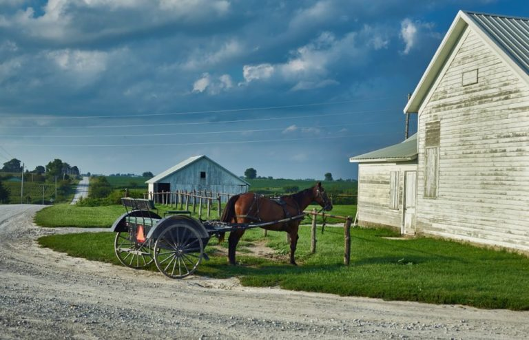 Michigan county threatens to demolish 14 Amish homes unless they give up their religious beliefs and upgrade their homes