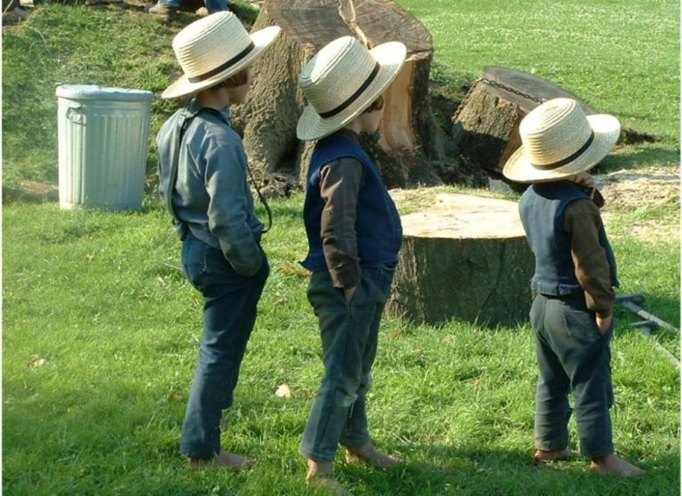 NY Supreme Court rules Amish cannot exercise religious vaccine exemption to attend their own private Amish school