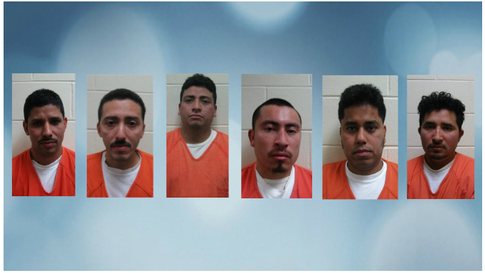 6 Illegals Busted as Part of Child Grooming Gang in Wisconsin