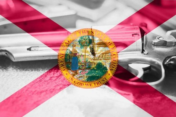 Florida: Your Republican State Senators Just Sold You Out On Gun Rights