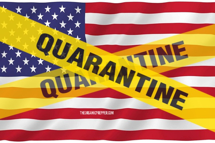 Would We Still Have Power and Water If We Had a Massive Coronavirus Quarantine in the US?