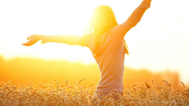 Homeland security scientist confirms that natural sunlight kills coronavirus