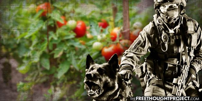 Heavily Militarized SWAT Raids Innocent Family for Growing Tomatoes—Taxpayers Held Liable