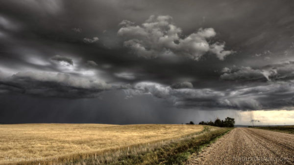 """Great Derecho"" storm just destroyed crops, grain stores all throughout the Midwest"
