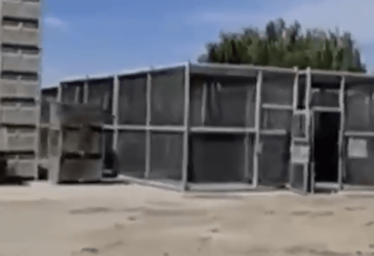 About Those Rows Of Human Cages In Caruthers, California… (Video)