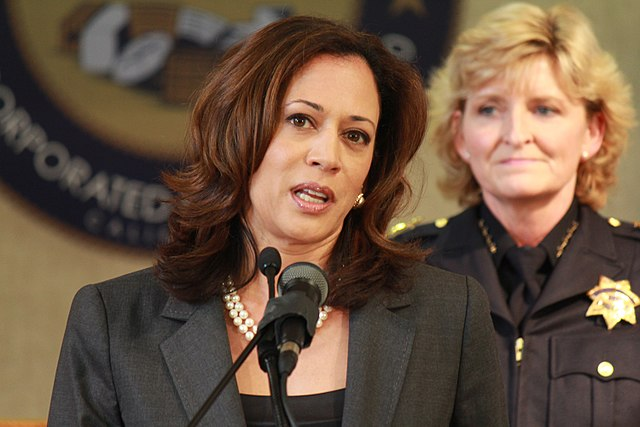 """Mainstream media: Any criticism of Kamala Harris is """"racism and sexism"""""""