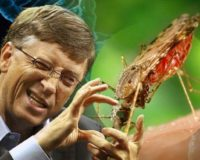 Bill Gates On Board With GMO Mosquitoes To Administer Vaccines Bypassing Informed Consent