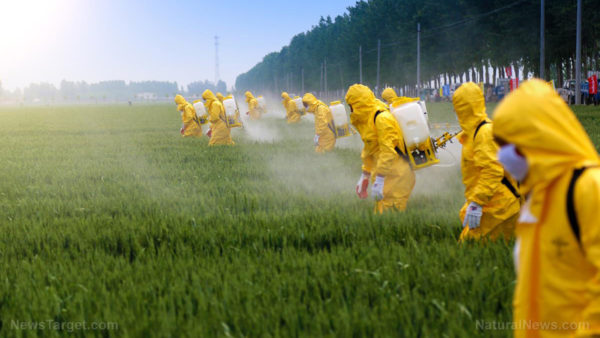 Lawsuits piling in against Syngenta over paraquat weedkiller, which causes Parkinson's Diseas