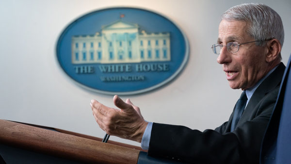 House Intelligence Committee calls for the ARREST and PROSECUTION of Dr. Anthony Fauci