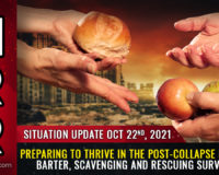 Preparing to THRIVE in the post-collapse economy: Scavenging, barter, off-grid food production and rescuing survivors